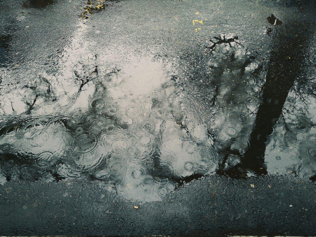 Preciouspitation - Rain