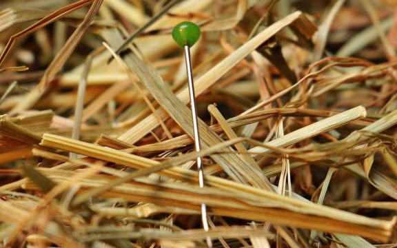 Fine-Biofuels - Needle in the haystack