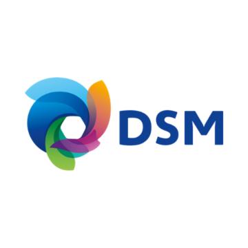 Partner logo - DSM