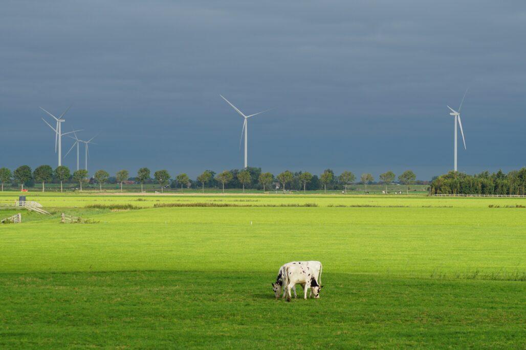 Green Industry- Landscape wind turbine
