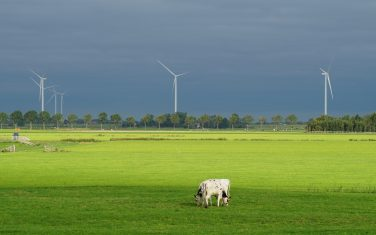 Green Industry- Landscape wind turbine